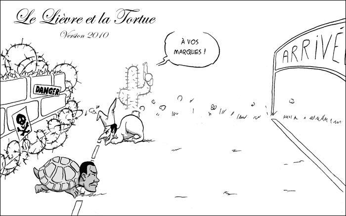 http://noir.papillon.free.fr/illustration/cactusalites/13/20100723livereettortue.png