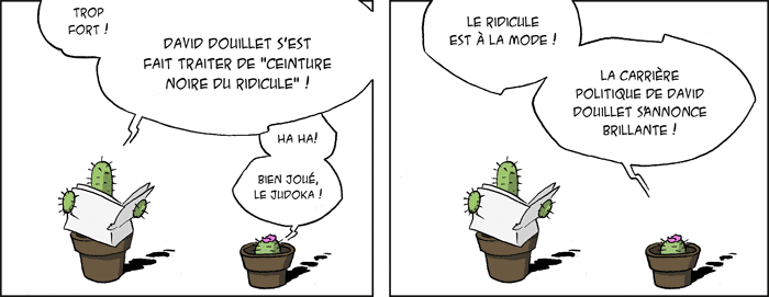 http://noir.papillon.free.fr/illustration/cactusalites/15/20100727ridicule.png